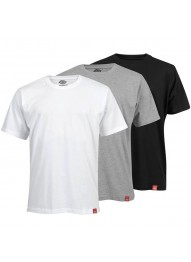DICKIES MULTI COLOR T-SHIRT PACK